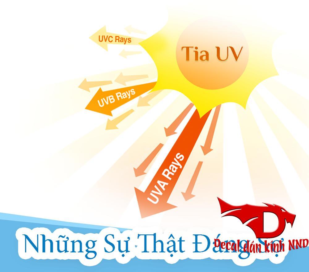 Phim cách nhiệt có tác dụng chống tia UV lên đến 400%. Tác hại của tia UV lên cơ thể và sức khỏe của con người là vô cùng to lớn